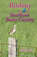 Birding the Bruce Peninsula cover